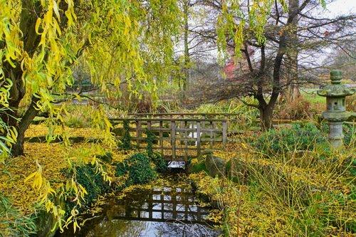 Осень в Риджентс парке