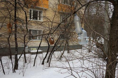 https://fs3.fotoload.ru/f/0220/1581165299/500x500/e3eab14cea.jpg