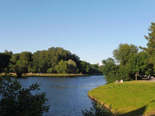Летний день в парке