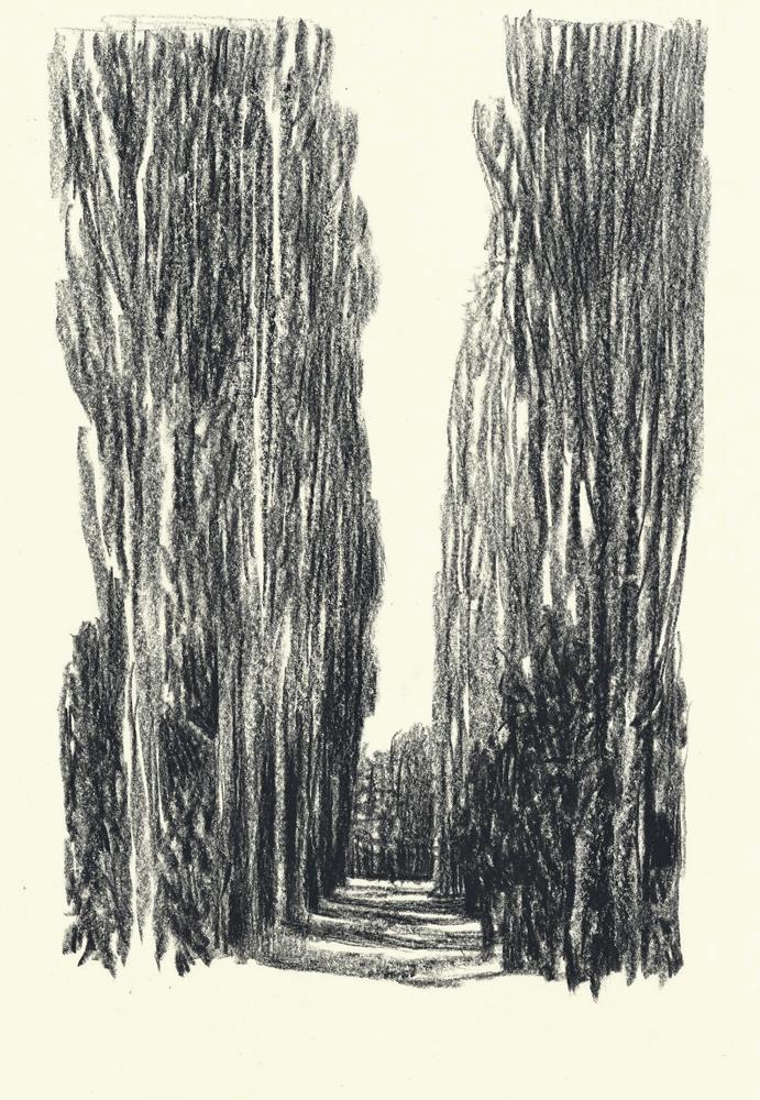 Andrea Serio (род. 1973г).