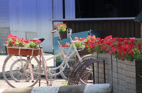 Стоянка для велосипедов у кафе.