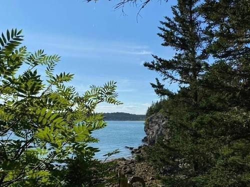 Берег канадского озера Чип
