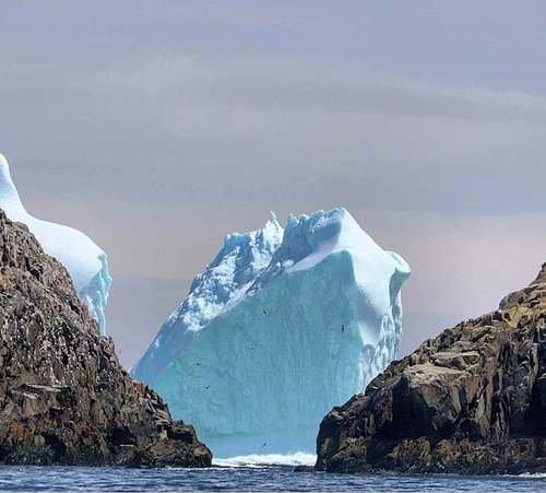 Айсберги у Ньюфаундленда