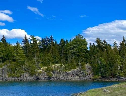 Лесное озеро Pond del Oro