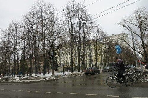 https://fs3.fotoload.ru/f/0319/1551462183/500x500/c796f54aa0.jpg