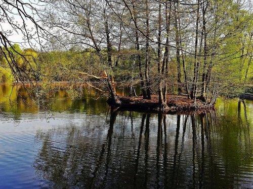 Утиный островок.