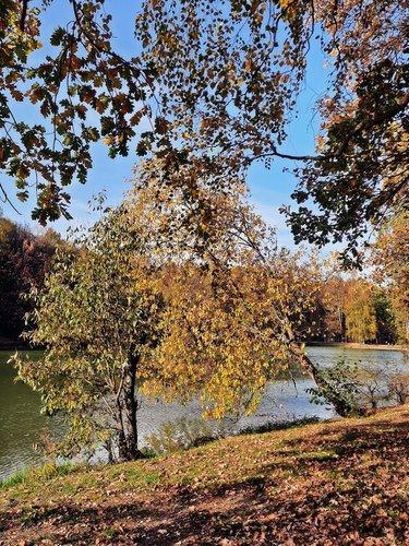 Осень в Измайлово.