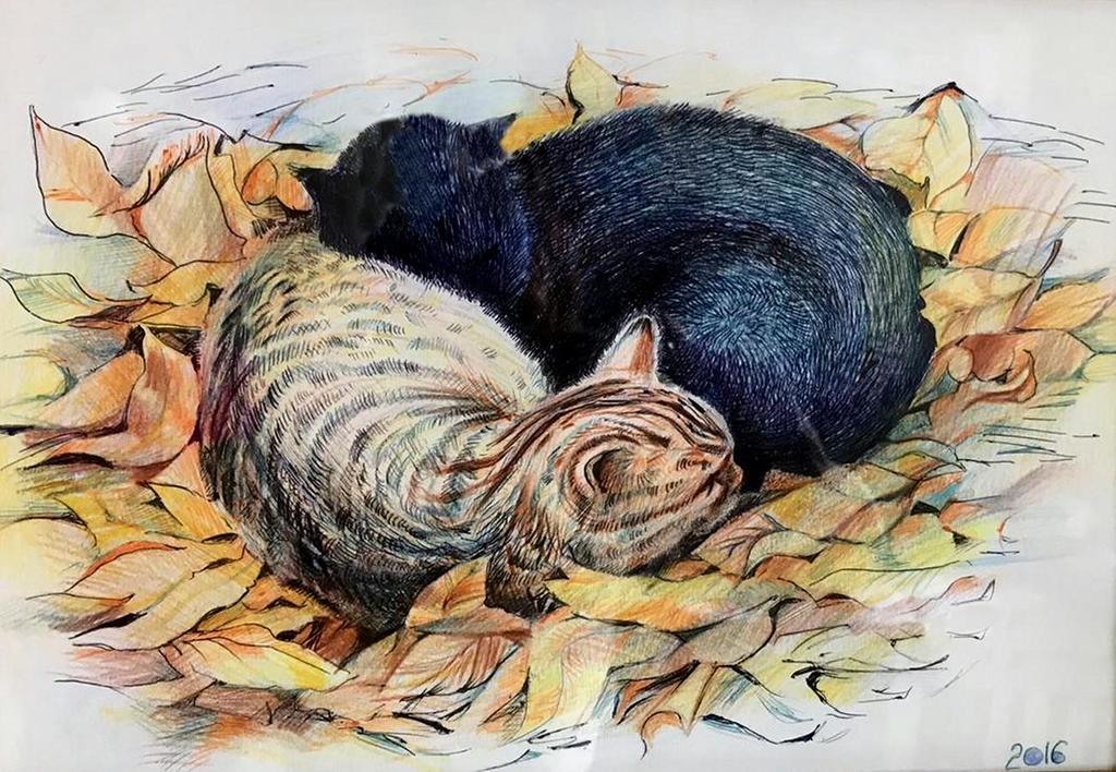 Ольга Петровна Соболева (род. в 1963 году). Кошки.