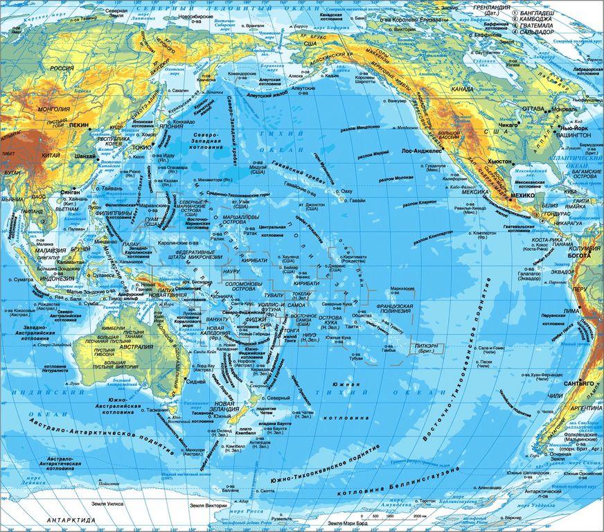 Живой мир. Карта 091
