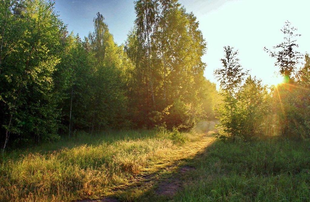 жить фото дорога к солнцу скучают свободное время