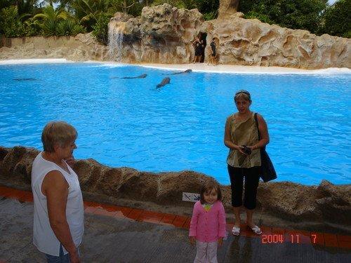 В дельфинарии Лоро-парка на острове Тенерифе