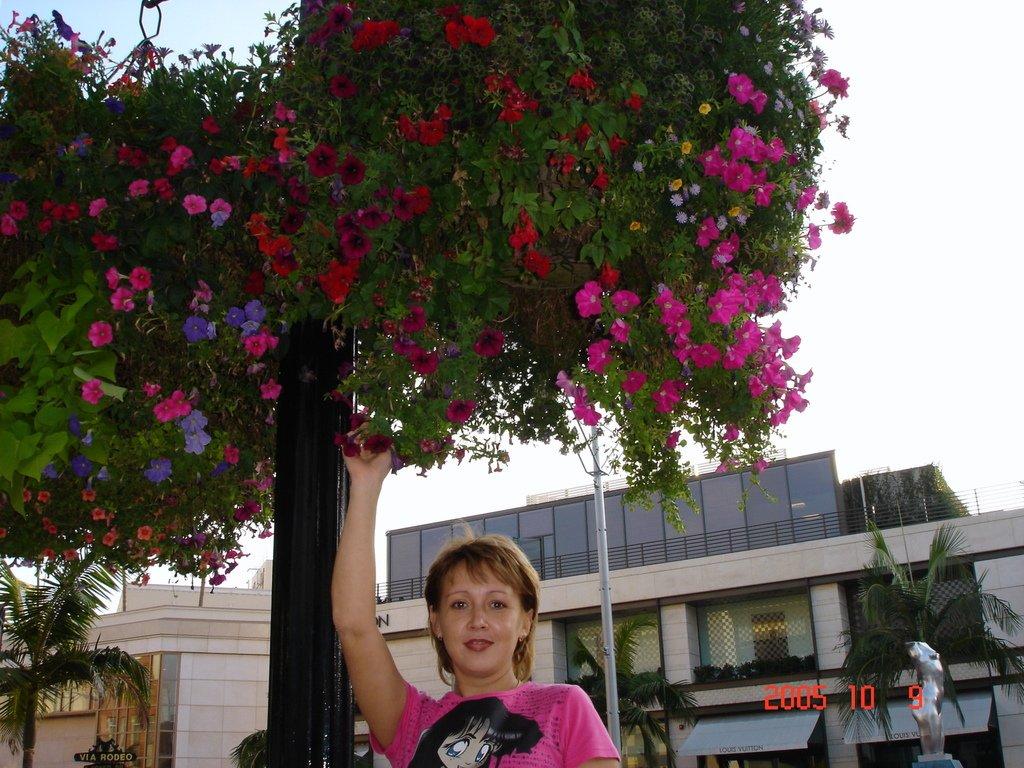 Цветы на пешеходном переходе.