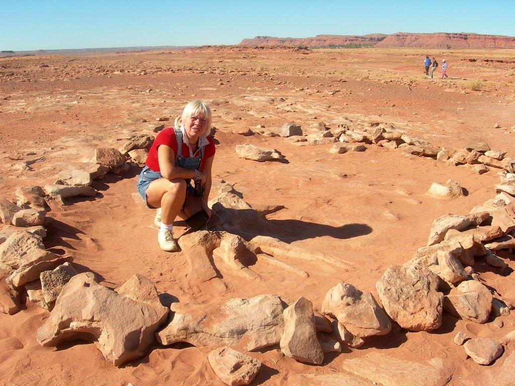 Штат Аризона. Следы динозавров.