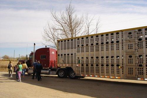 Семейный бизнес в США. Ферма на колесах.