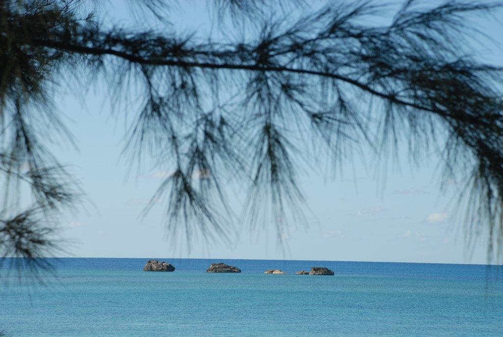 Багамское безмолвие...