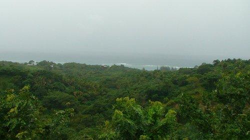 Джунгли Гондураса