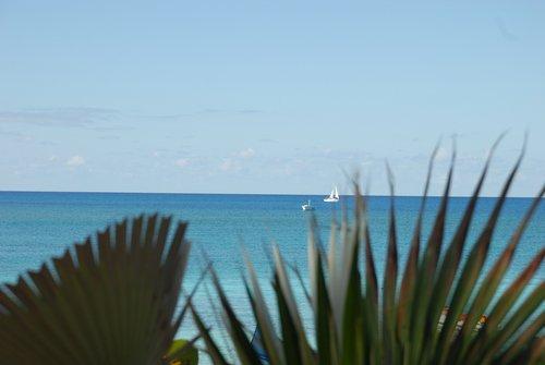 На Багамах в декабре...