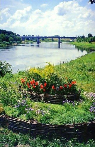 Летним днём на берегу реки