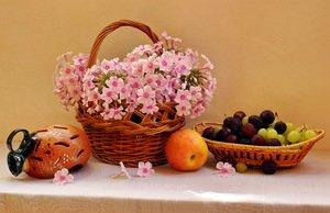 букет флоксов и фрукты