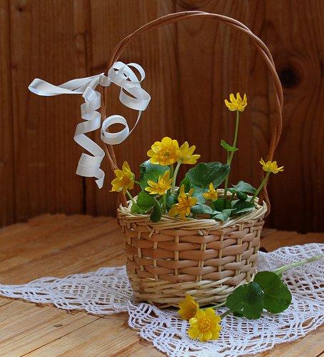 весенний букетик