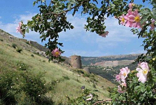 с видом на крепость Чембало
