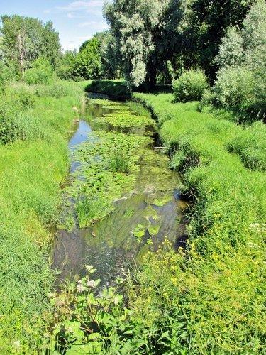 Река Мирожка