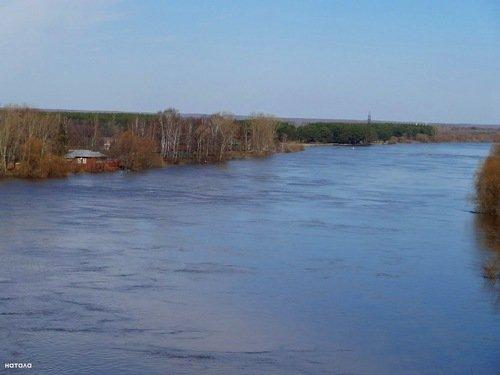 Разлилась река в апреле