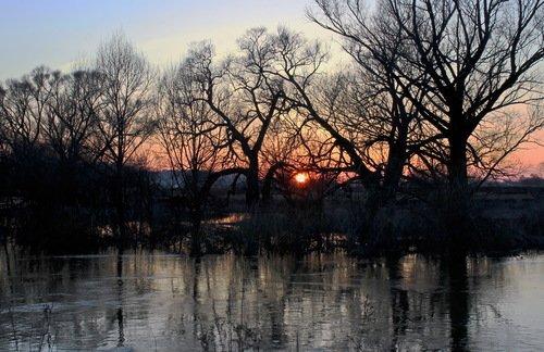 апрель, разлив реки Протва