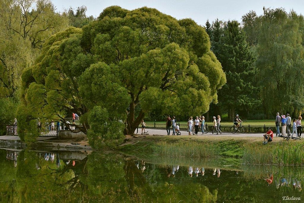 Воскресным днём в Ботаническом саду