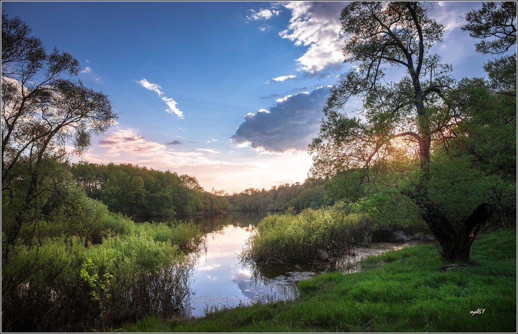 Майский вечер у реки