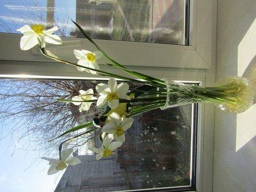 На апрельском солнышке!