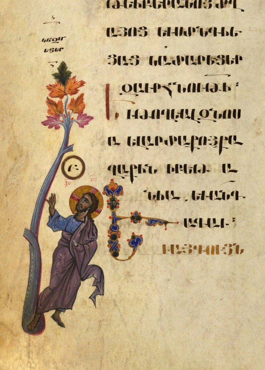 Проклятие смоковницы. Миниатюра Евангелия. Армения, 1262 год. Миниатюрист Торос Рослин.