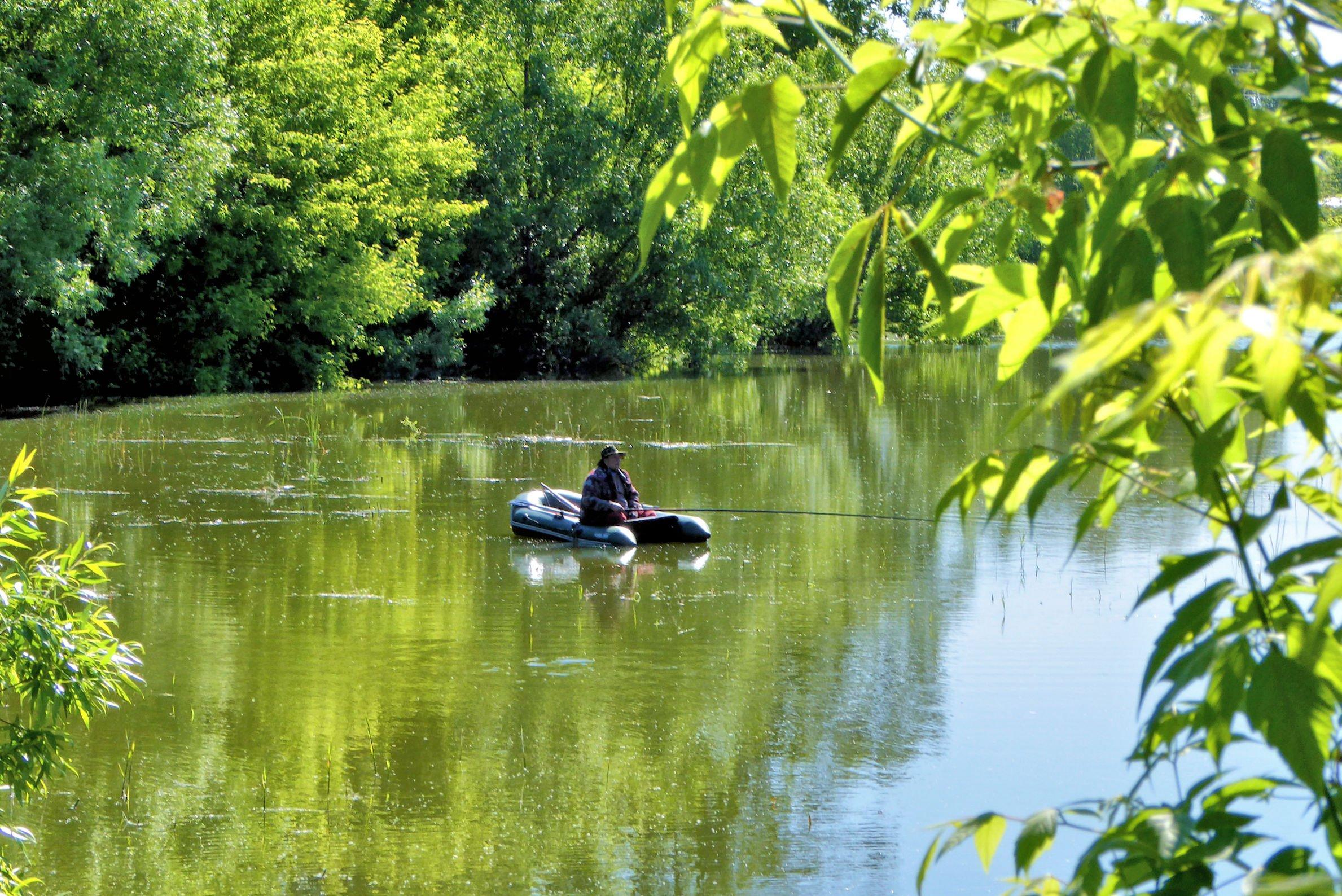 Рыбалка на пруду картинка