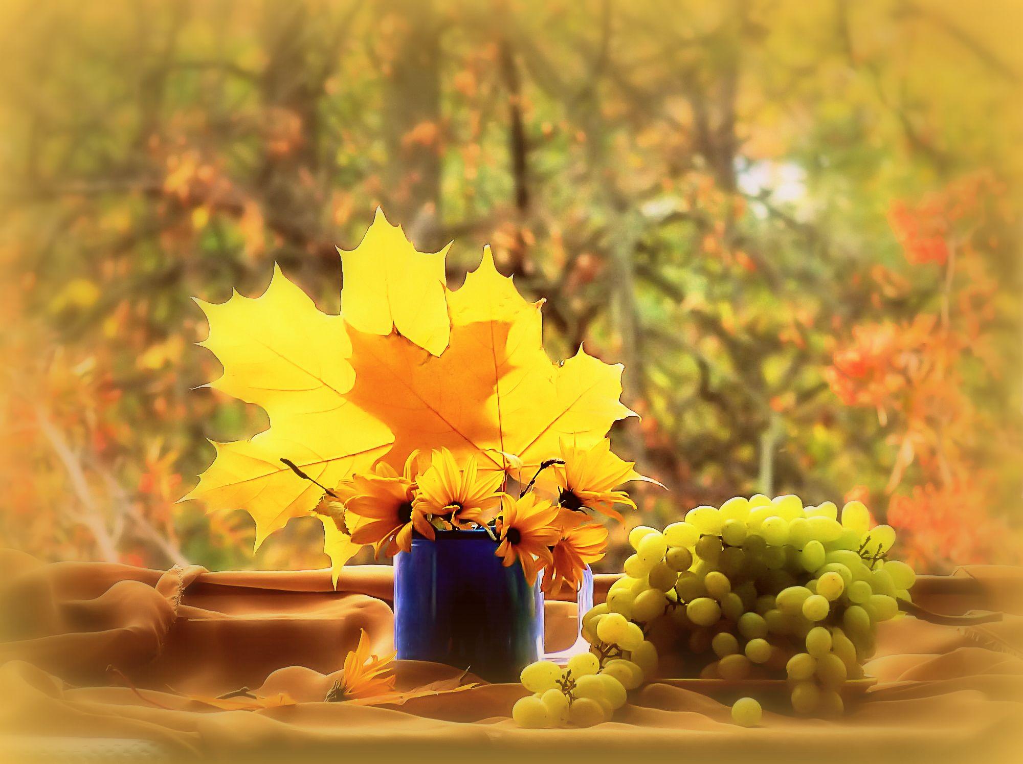 Фото открытка осень, весь сайт