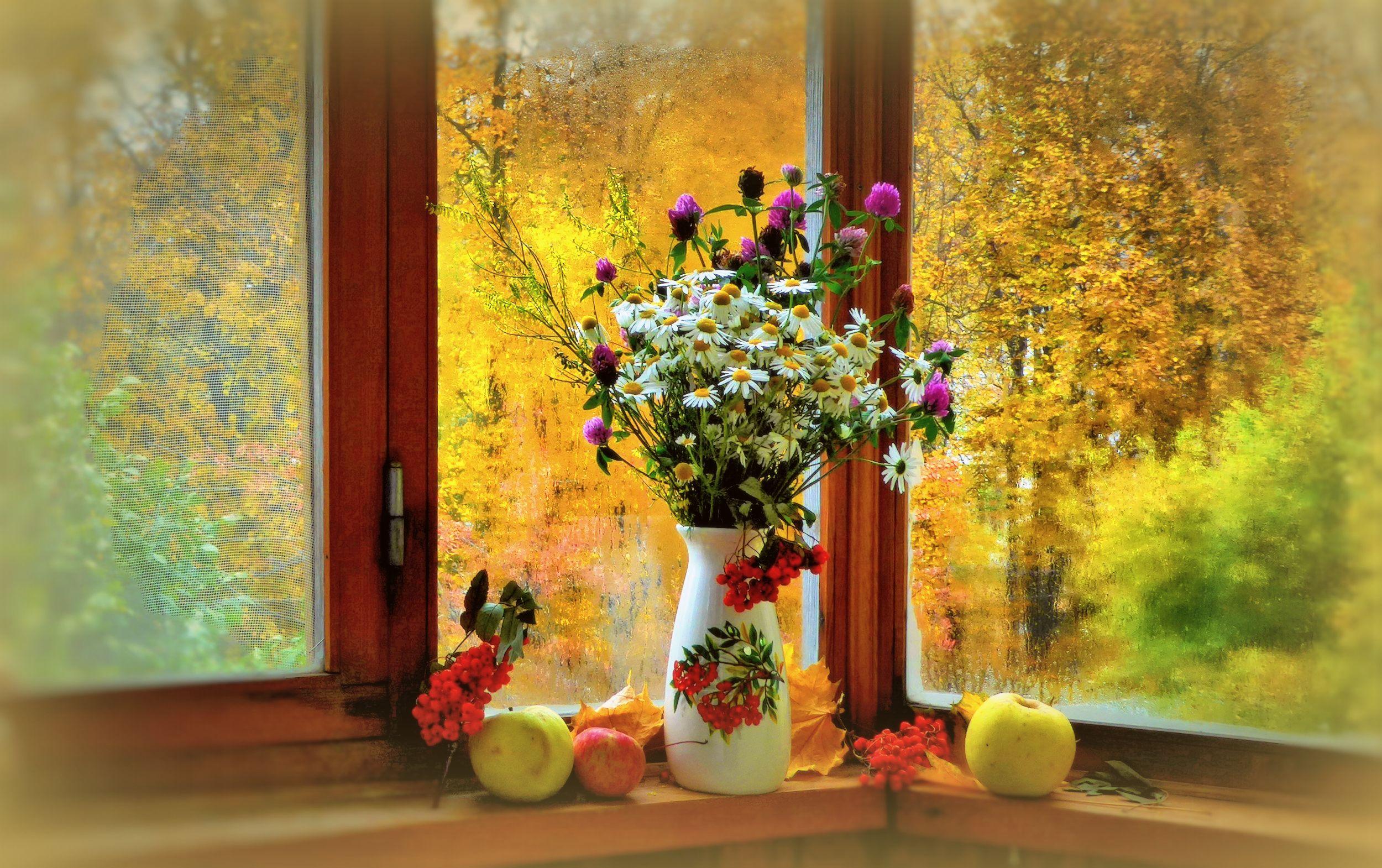 отличается оригинальной, картинки осень за окном уйму интересных