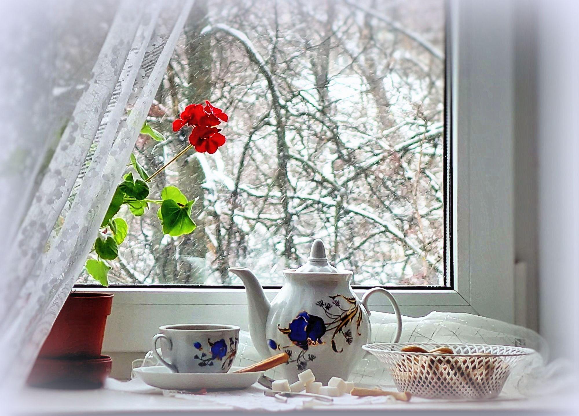 Утро за окном открытка, днем