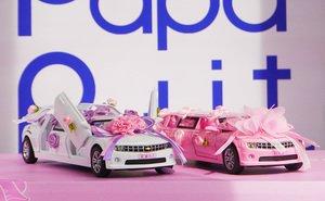 Розовый лимузин машинка