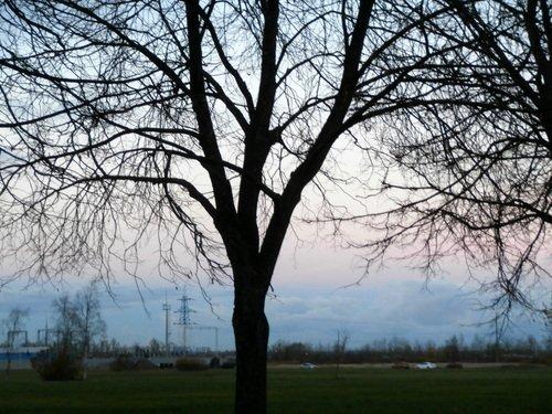 Закат над парком