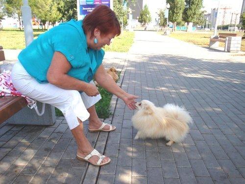 """ПОБЕДИТЕЛИ конкурса  """"Дама с собачкой"""""""