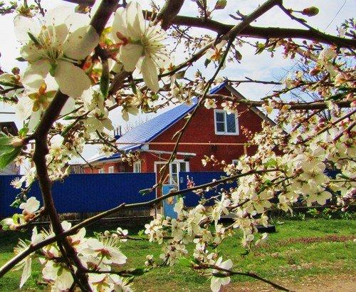 Опять Весна на нашей улице!