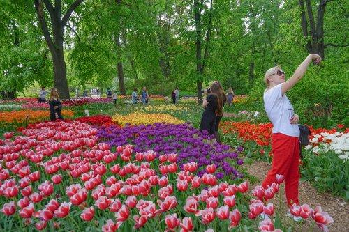 Фестиваль весенних цветов