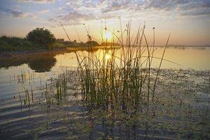 Встаёт над озером рассвет.