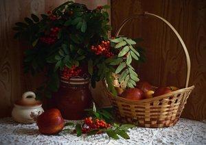 Натюрморт с рябиной и яблоками