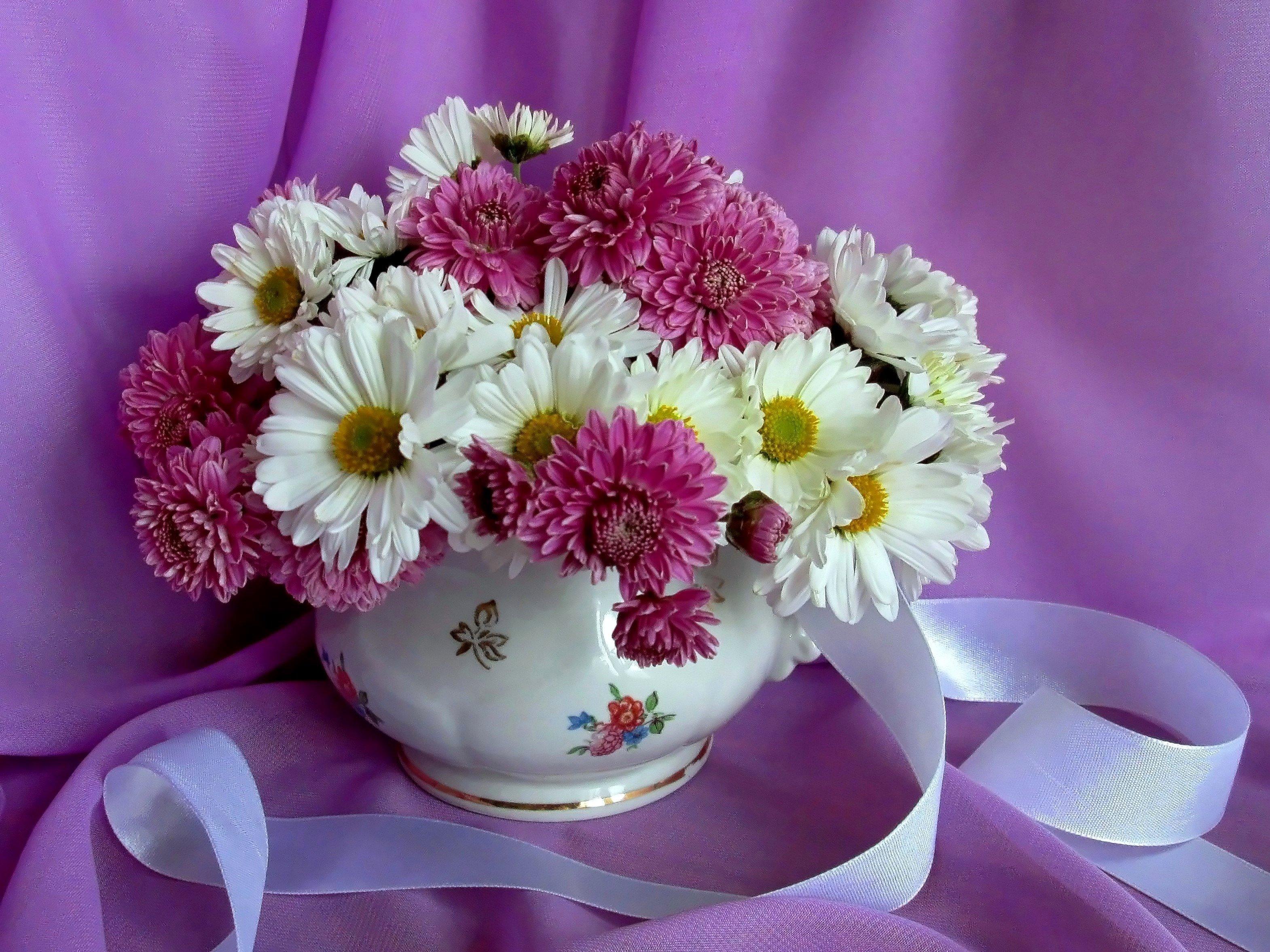Красивые открытки с хризантемами доброе утро, открытку марта