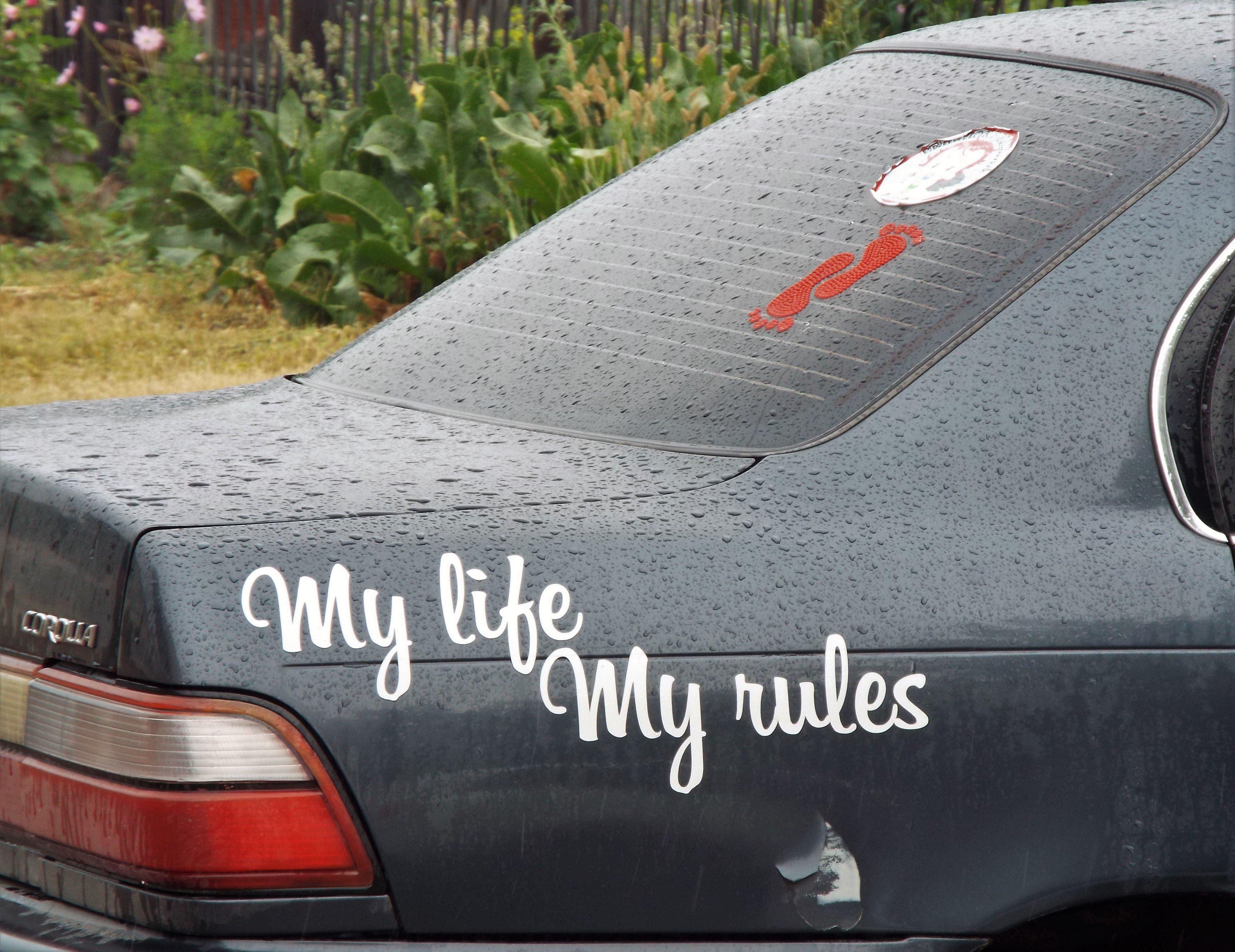 Моя жизнь мои правила демотиваторы
