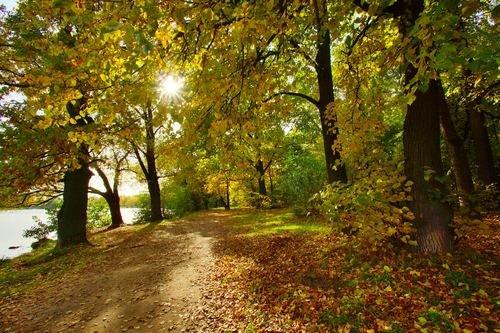 Красива осень
