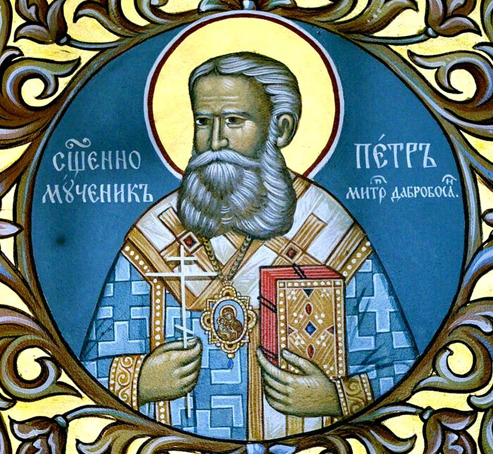 Священномученик Пётр (Зимонич), Митрополит Дабро-Боснийский.