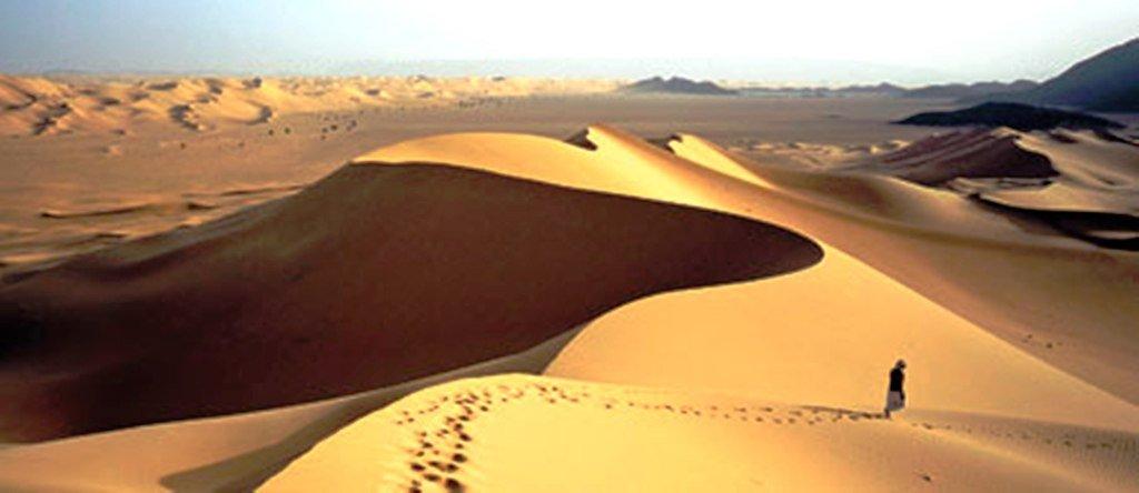 Сахара. Модель «биотического насоса» объясняет, почему ветер дует из пустынь к океану, а не наоборот.