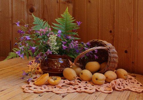 букет полевых цветов и абрикосы