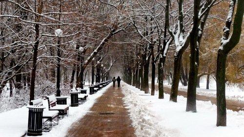 В раннюю зиму...